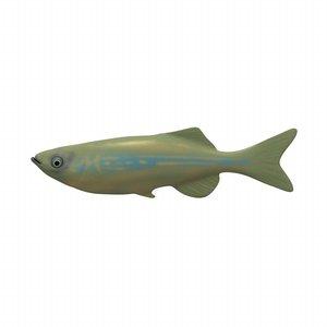 fish aquarium 3ds