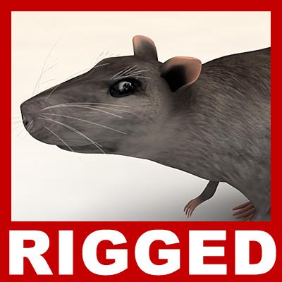 max rat rigged