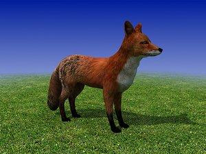 3d red fox