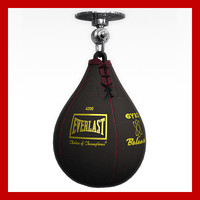 3d boxing speed bag