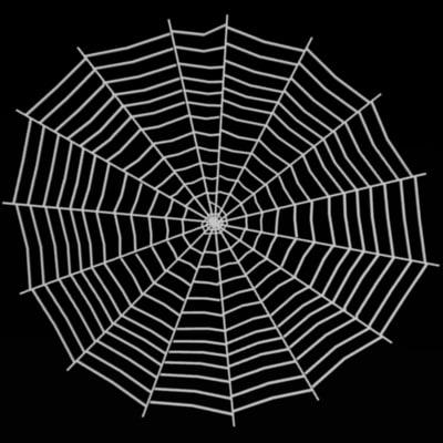 maya spider spiderweb web