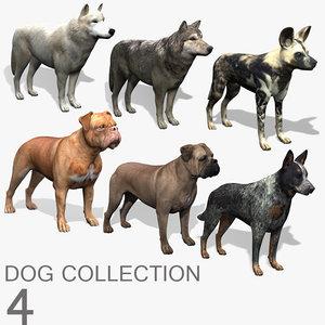 dog 4 3d model