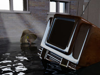 3ds max flooded basement