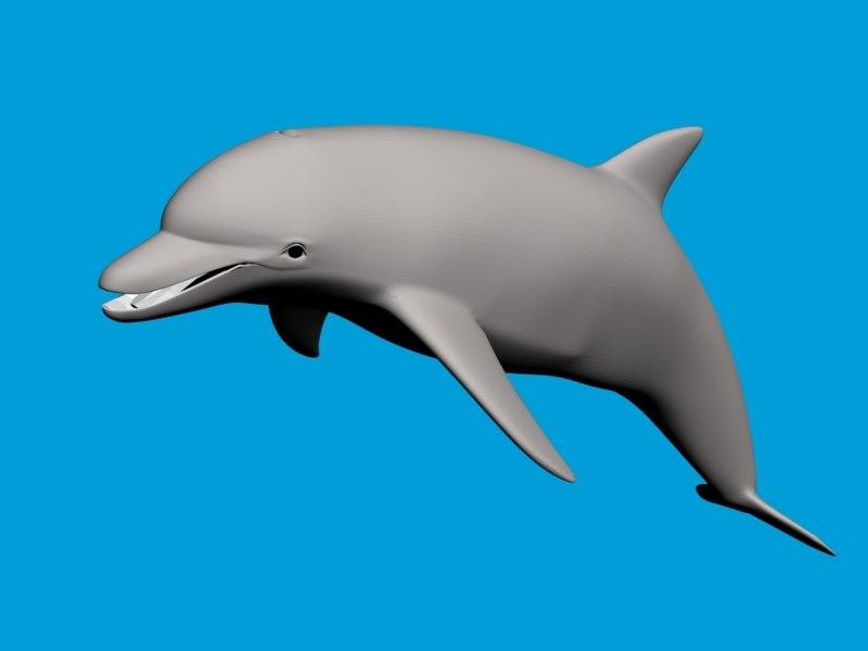 dolphin max