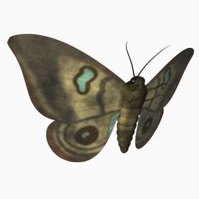 3d moth model