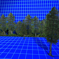 3d max pine tree 01 background