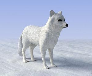 3d arctic fox