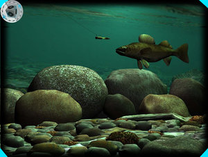 underwater walleye scene max