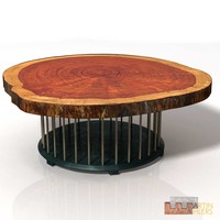 Trunk Slice Coffee Table