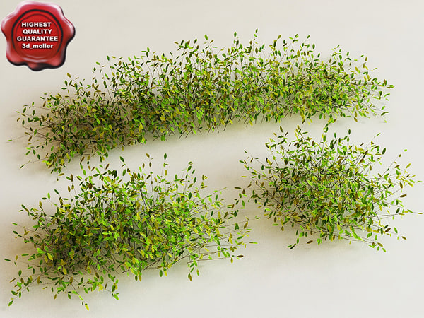 3ds bush modelled
