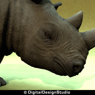 3d model rhinoceros