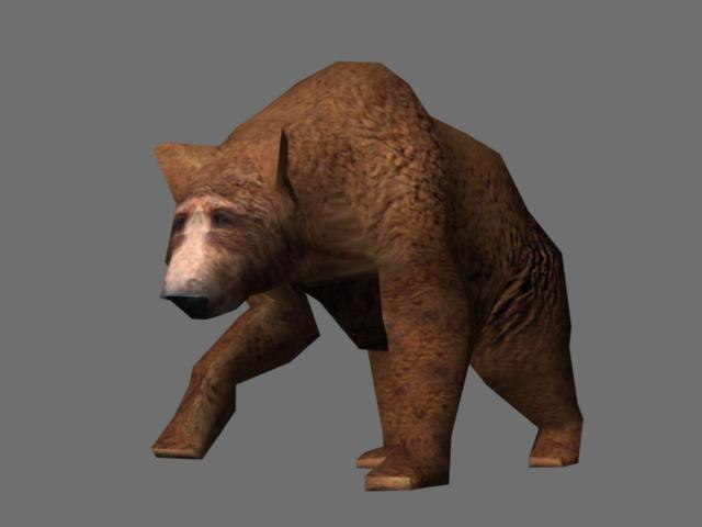 3d grizzly bear animate model