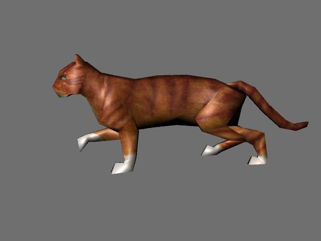 cat animations 3d model