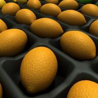 lemons limes 3d model