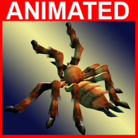 free spider animations 3d model