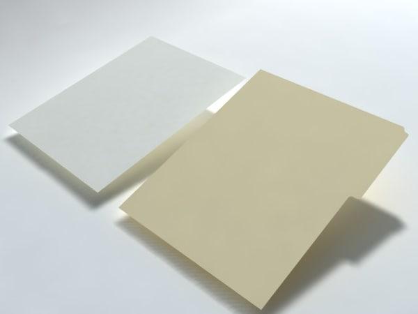 max sheet folder paper