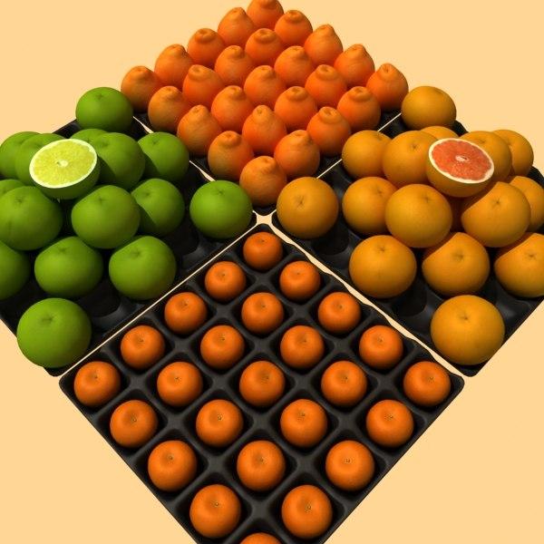 3d grapefruits orange mandarine fruits model
