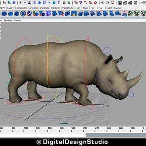 3d rhinoceros rigged model