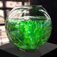 bryce fishbowl fish