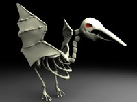 Skeleton Bird