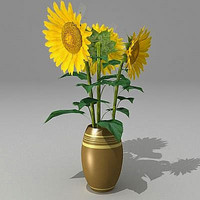 Bouquet Sunflower fbx