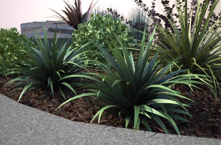ornamental grass - max