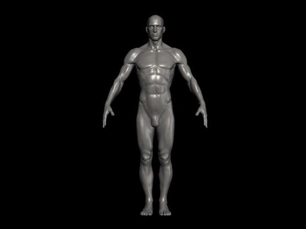3d model human male formats
