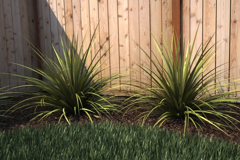 3d ornamental grass -