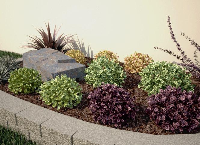 3d renderings ready shrub - model