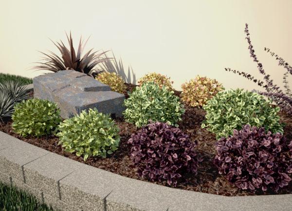 3d renderings ready shrub -