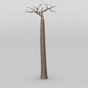 tree baobab max