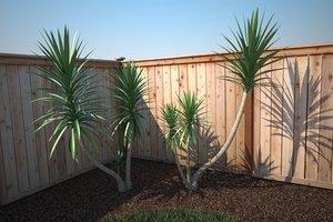 3d renderings ready tree shrub