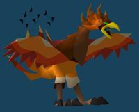 3d falcon bird model