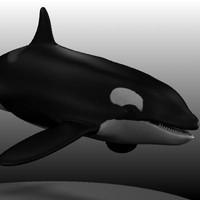 female orca.obj