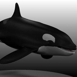 3d female killer whale