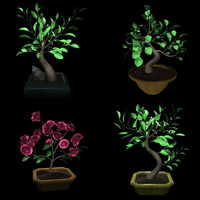 4 bonsai trees 3d max