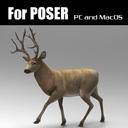 Elk for Poser
