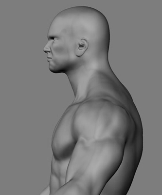 athletic male normal maps max