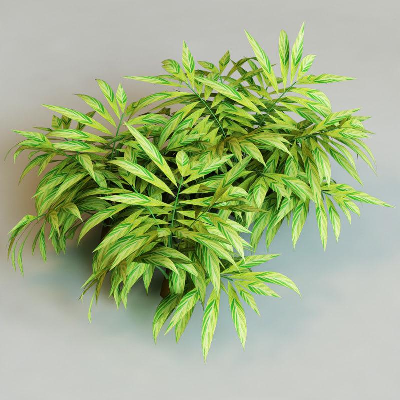 c4d shrubs vol4 collections bush