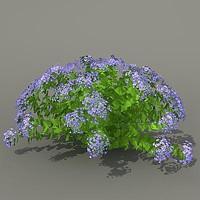 Busch4_flowers_hi_3ds.rar