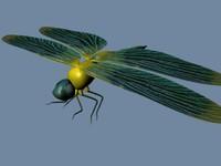 dragonfly 3d obj