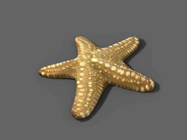 3d model seastar bathrooms accessories