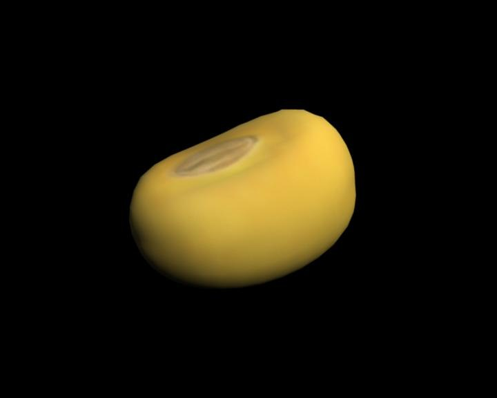 soybean bean 3d ma