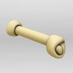 3d dogbone bone dog model