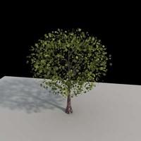 Tree-02vray.max