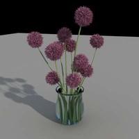 maya small flowers
