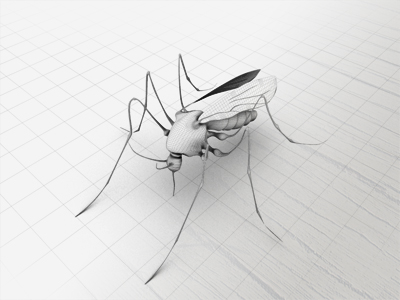 3ds mosquito insect