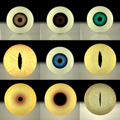 maya 9 eyes