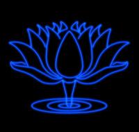 Bluelotus.c4d.zip