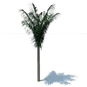 3dsmax palm tree